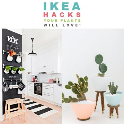 IKEA Hacks Your Plants Will LOVE!