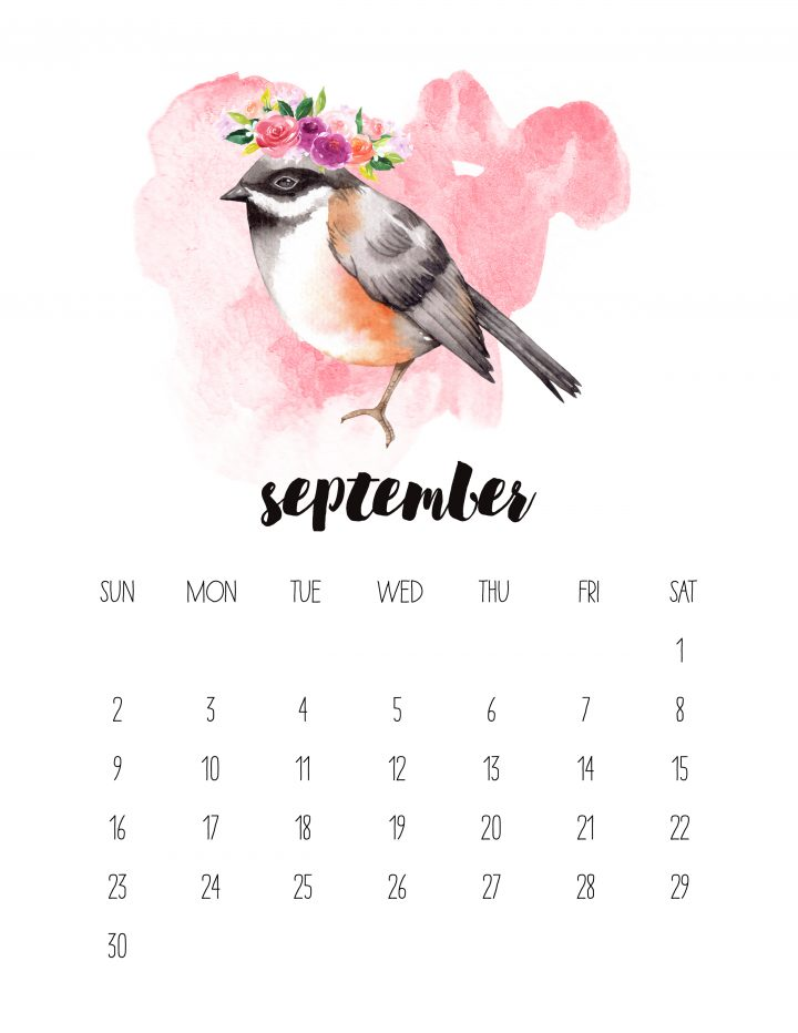 This flighty fellow is the face of the September page of the 2018 Watercolor Animals calendar