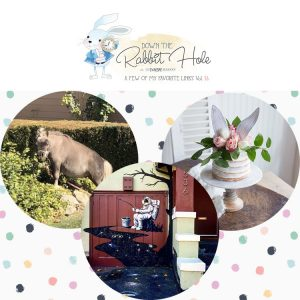 Down the Rabbit Hole // Where Cool Links & Pet Charity Meet!