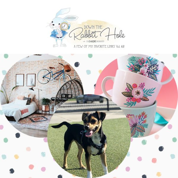 Down the Rabbit Hole // Where Cool Links & Pet Charity Meet!!!!