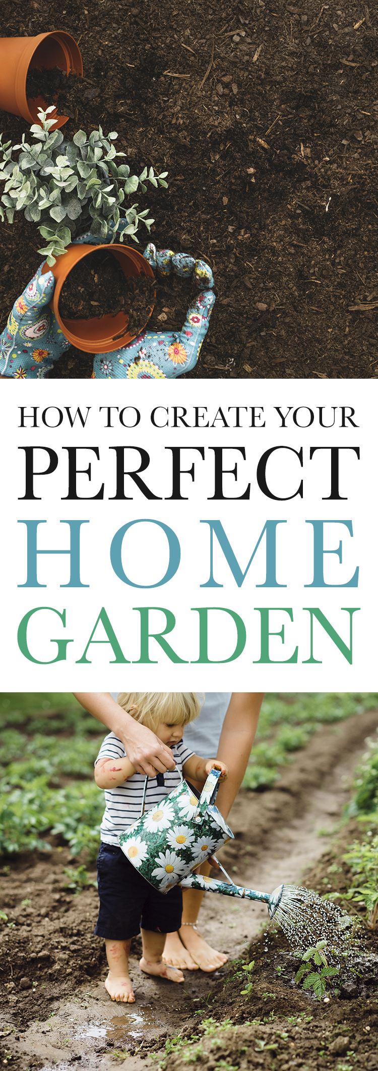 How to Create Your Perfect Home Garden!