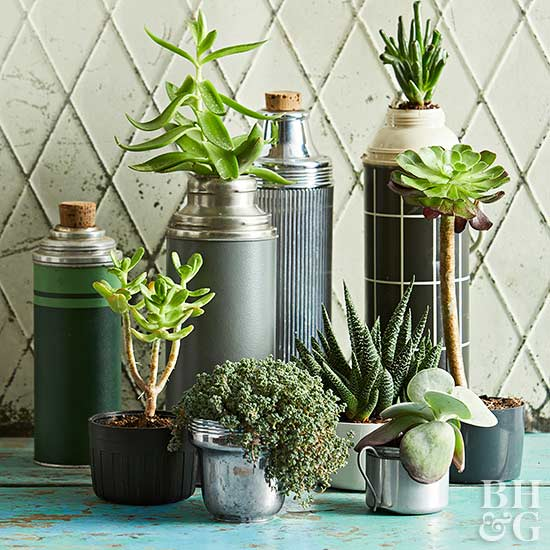 These old thermos containers make great succulent planters.