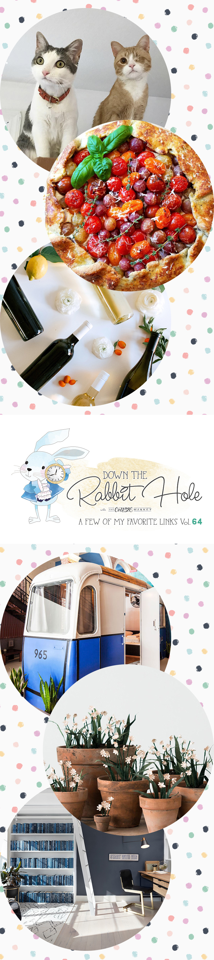 Down the Rabbit Hole // Where Cool Links & Pet Charity Meet!!!!!!