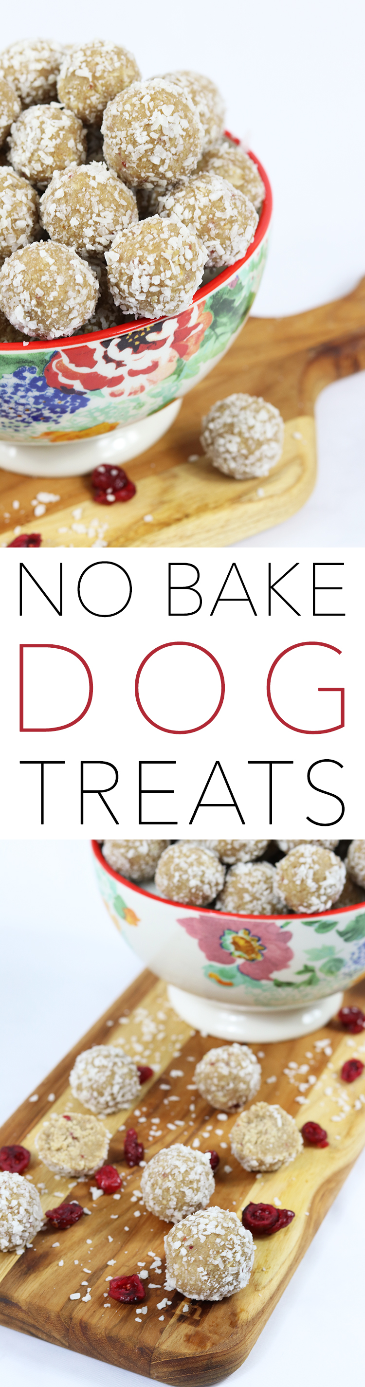 Quick and Easy No Bake Dog Treats