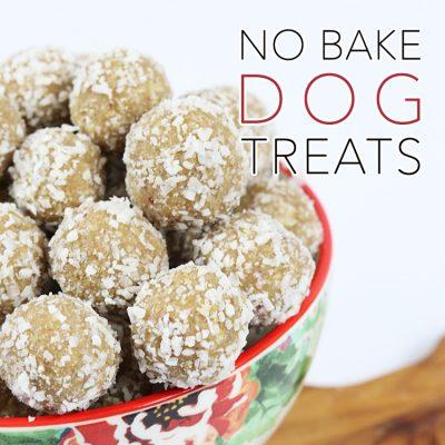 Quick and Easy No Bake Dog Treats