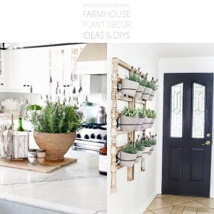 Brighten Your Day With Farmhouse Plant Decor Ideas and DIYS