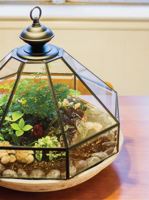 This clear lantern is a fun and unexpected way to display plants and greenery.
