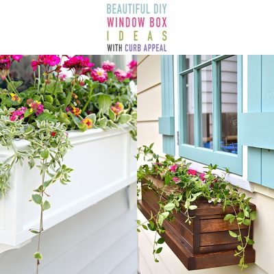 Beautiful DIY Window Box Ideas with Curb Appeal
