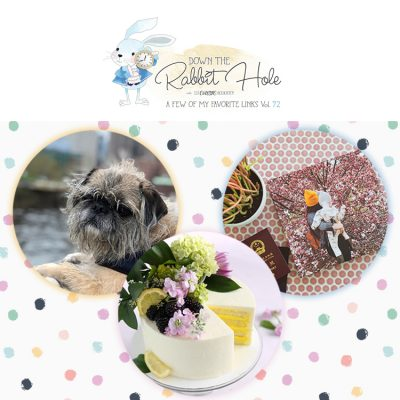 Down the Rabbit Hole // Where Cool Links & Pet Charity Meet!!!!!