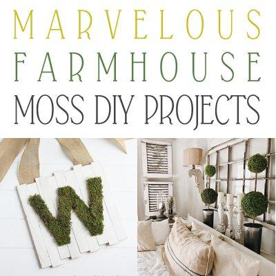 Marvelous Farmhouse Moss DIY Projects