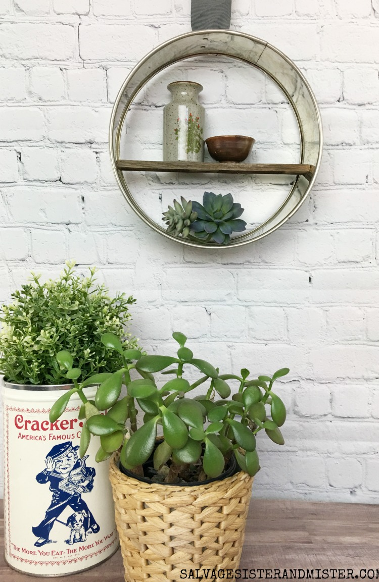 This cheesecake pan turned succulent holder with a wood shelf is farmhouse at its finest.