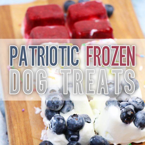 Patriotic Frozen Dog Treats