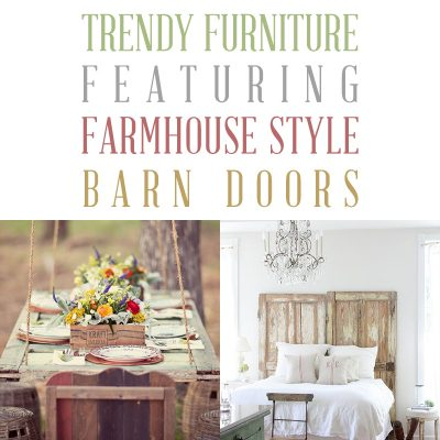 Trendy Furniture Featuring Farmhouse Style Barn Doors