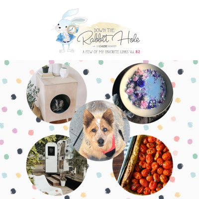 Down the Rabbit Hole // Where Cool Links & Pet Rescues Come Together!!!