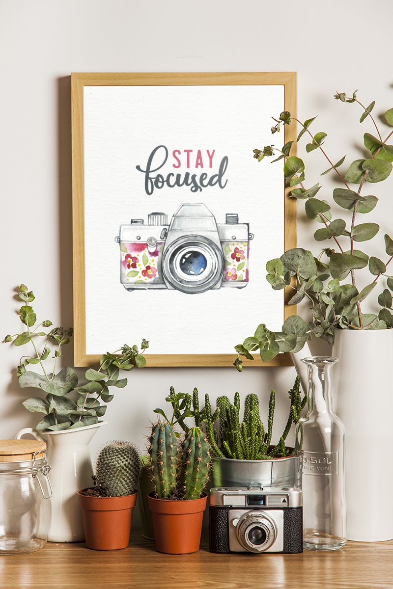 "potted plants and succulents surround a simple framed ""stay focused"" printable"