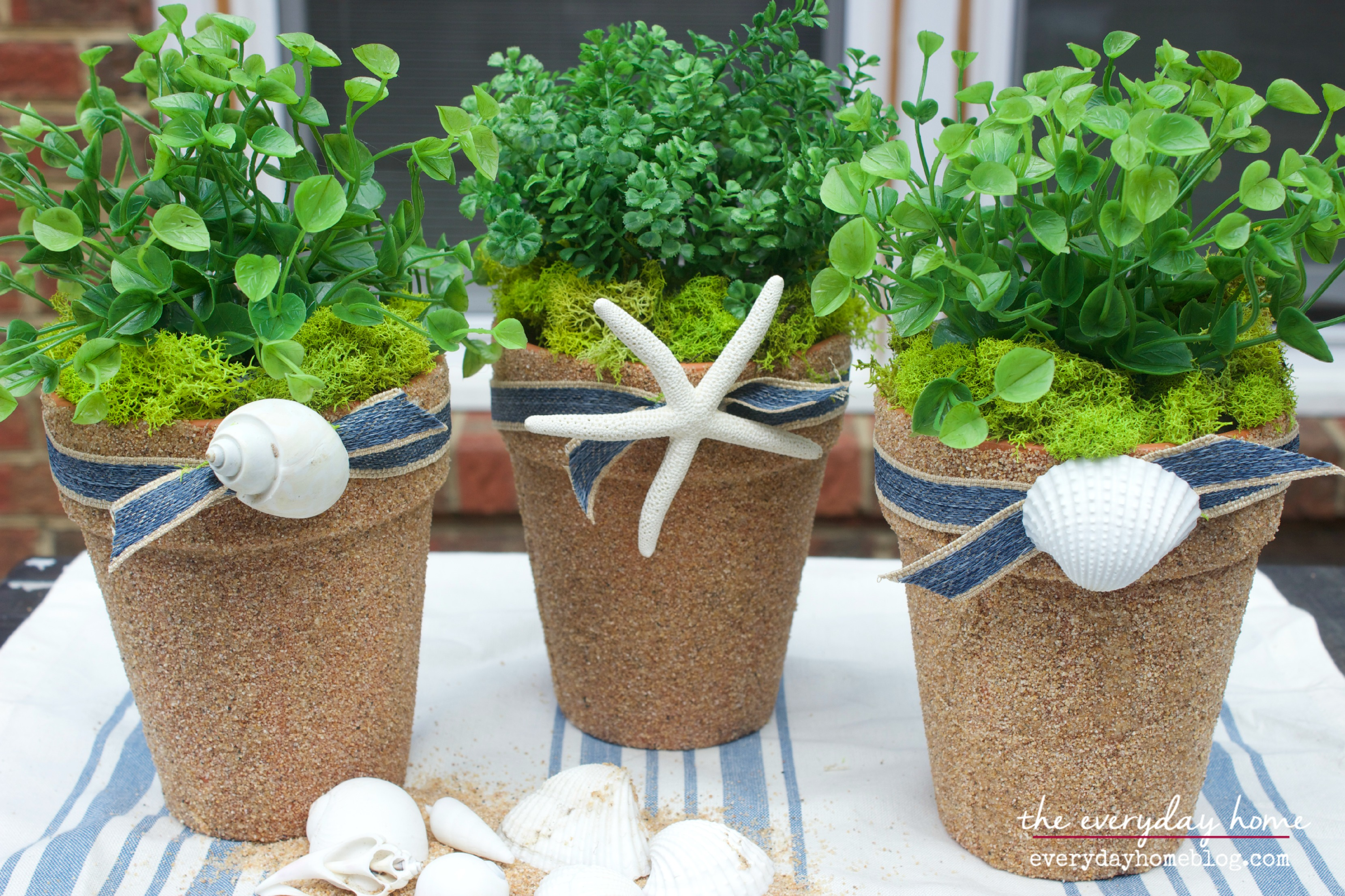 These coastal inspired flower pots adorned with seashells are adorable.