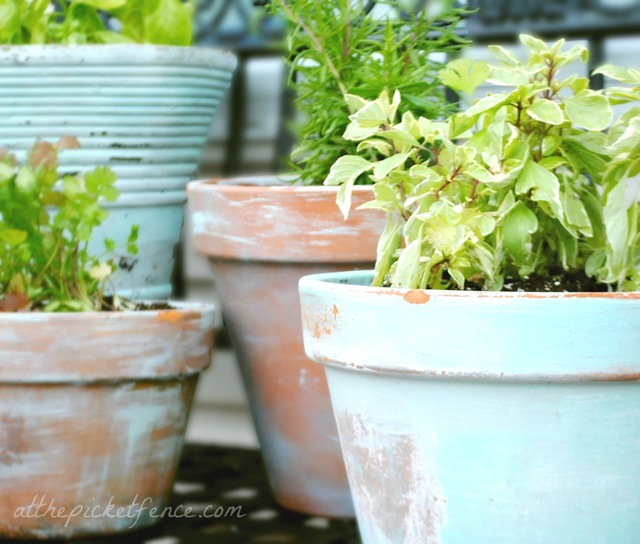 These rustic flower pots painted turquoise add color to the garden.