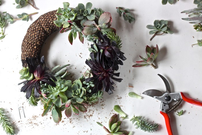 Succulents can be a decor piece in more than just pots - like this amazing DIY succulent wreath!
