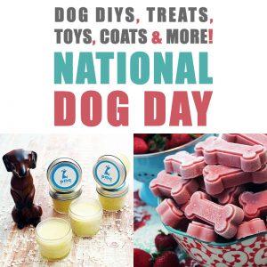 Dog DIYS, Treats, Toys, Coats and MORE /// National Dog Day