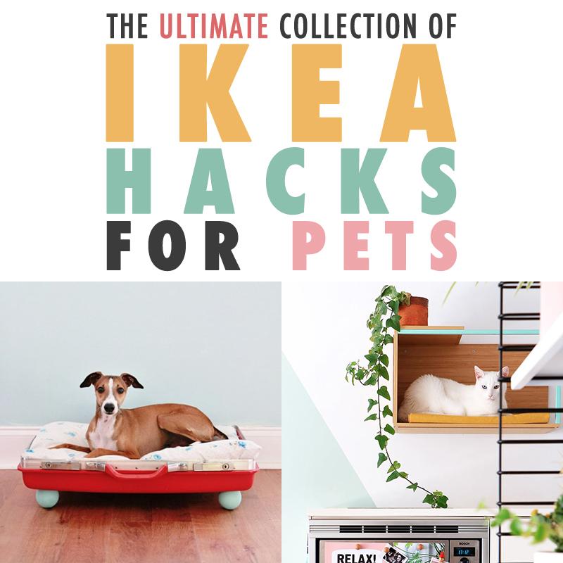 https://thecottagemarket.com/wp-content/uploads/2018/08/IKEAPetHack-t-2.jpg