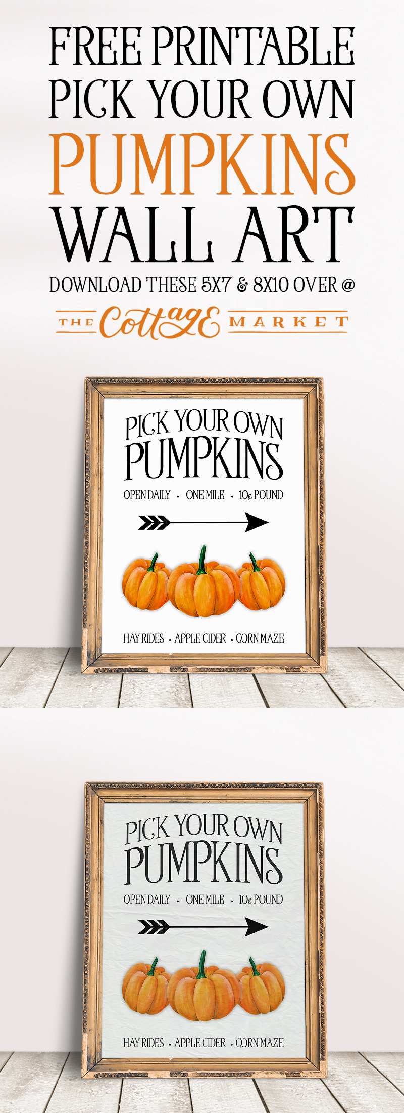 https://thecottagemarket.com/wp-content/uploads/2018/08/tcm-white-t-3-pumpkin.jpg