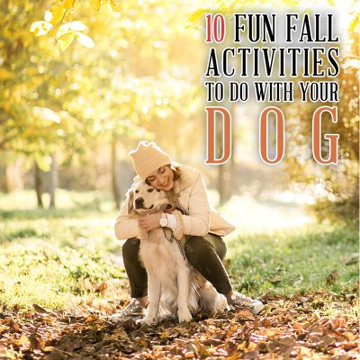 10 Fun Fall Activities You Can Do with Your Dog