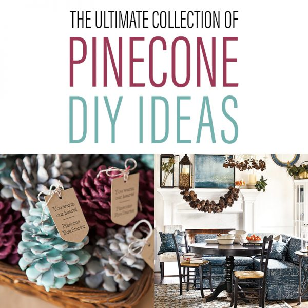The Ultimate Collection of Farmhouse PINECONE DIY Ideas