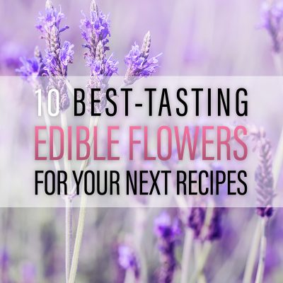 10 Best-Tasting Edible Flowers for Your Next Recipe