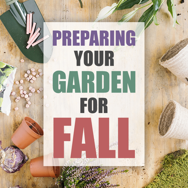 Preparing Your Garden For Fall is what it is all about today! If you are looking for that perfect Spring Garden you have to start in the Fall!