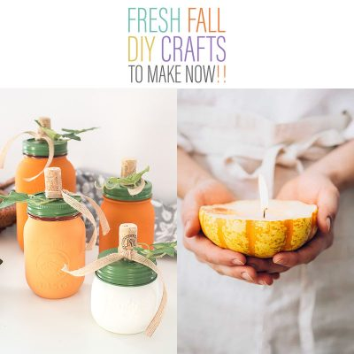 Fresh Fall DIY Crafts To Make Now!