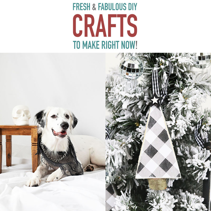 Time for some amazing Fresh and Fabulous DIY Crafts To Make Now! An assortment of creative handmade beauties we know you will enjoy!
