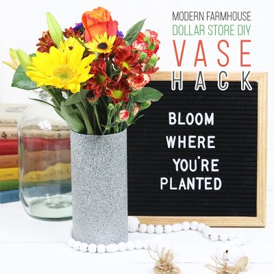 Modern Farmhouse Dollar Store DIY Vase Hack