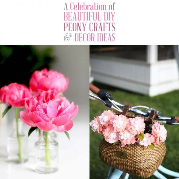 Today we Celebrate Beautiful DIY Peony Crafts and Decor Ideas that will bring beauty and a touch of Nature to your home.