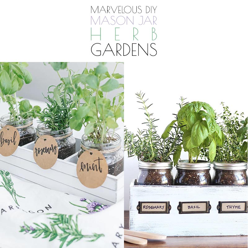 https://thecottagemarket.com/wp-content/uploads/2020/09/DIY-Mason-Jar-Herb-Garden-T-5.jpg