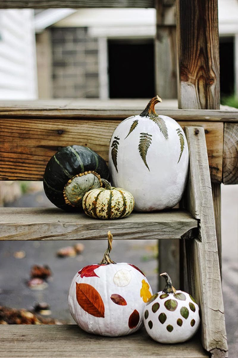 https://thecottagemarket.com/wp-content/uploads/2020/09/No-Carve-Pumpkin-1.jpg