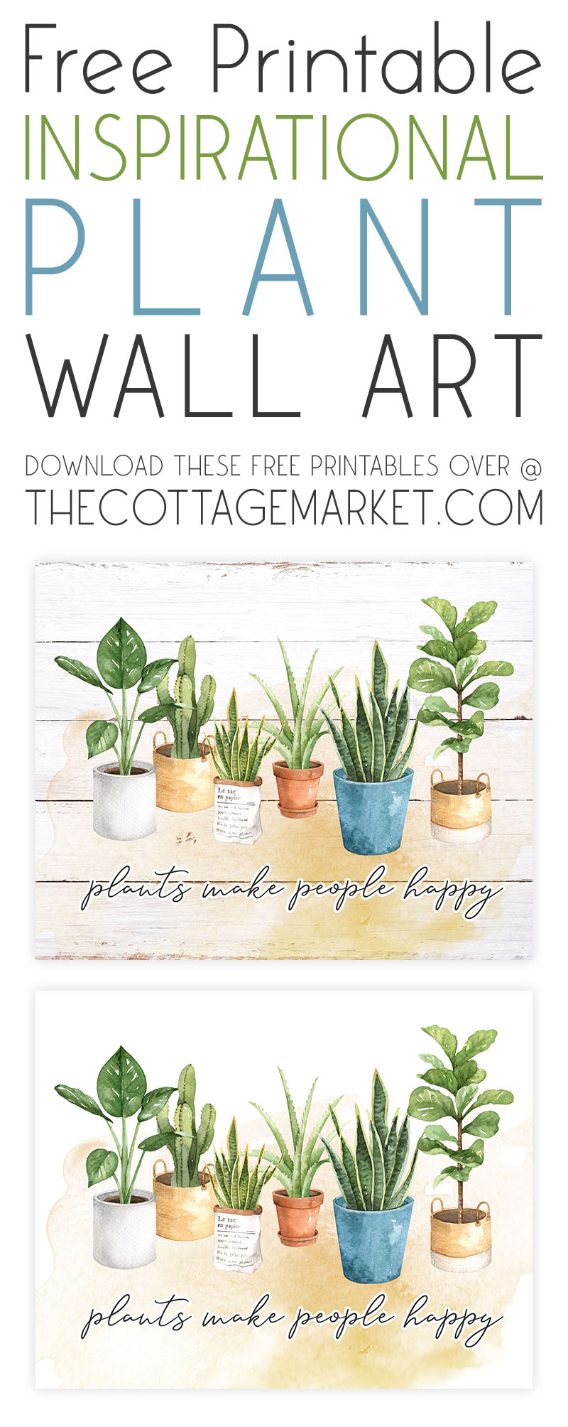 https://thecottagemarket.com/wp-content/uploads/2021/01/tcm-plants-T-1.jpg